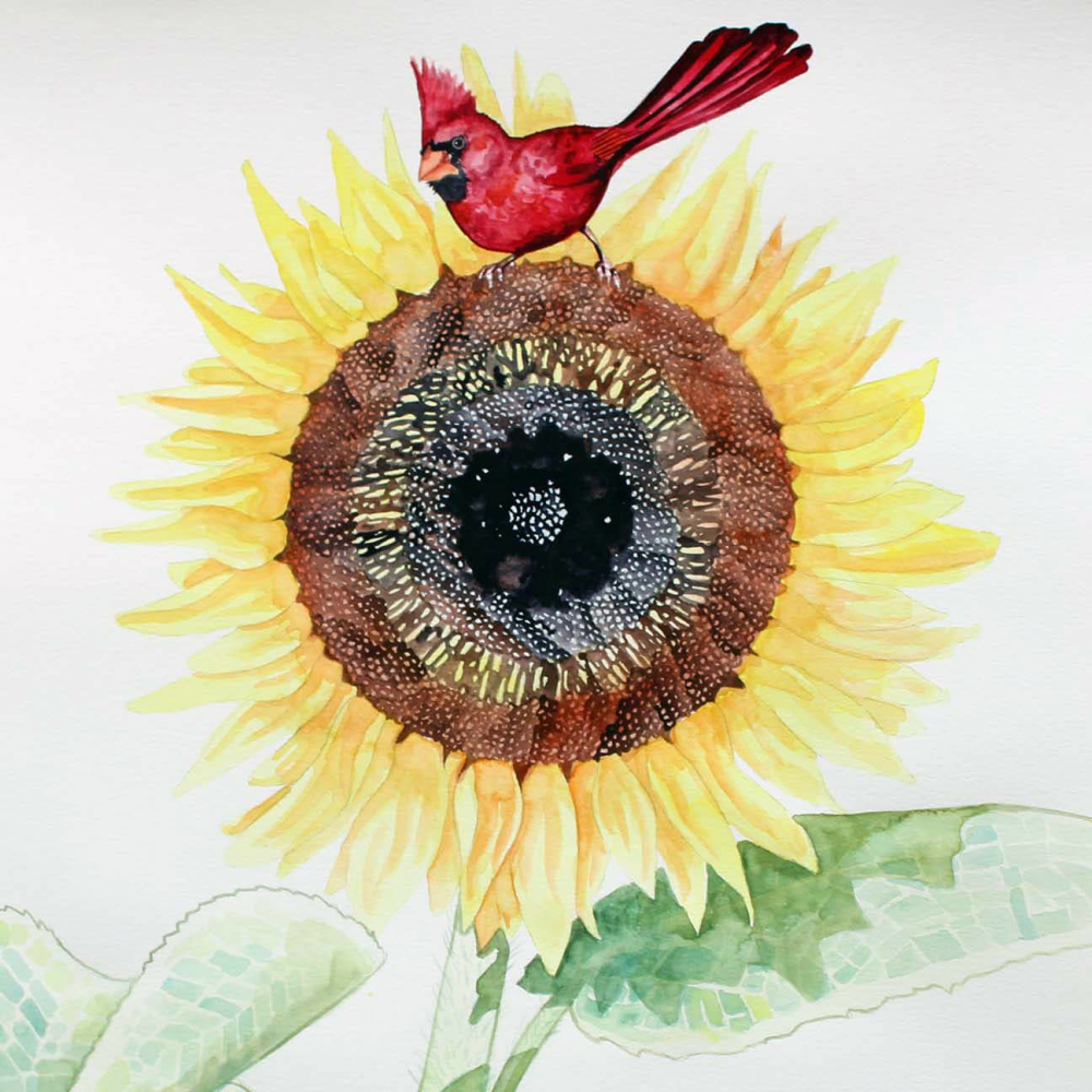 ᏅᏓᎠᏍᏓᏩᏗᏙᎯ  nv-da-a-s-da-wa-di-do-h  Sunflower