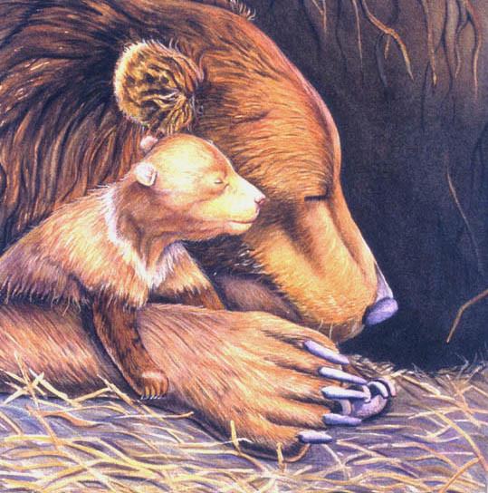Mother Bear Cub By Carol Cottone Kolthoff