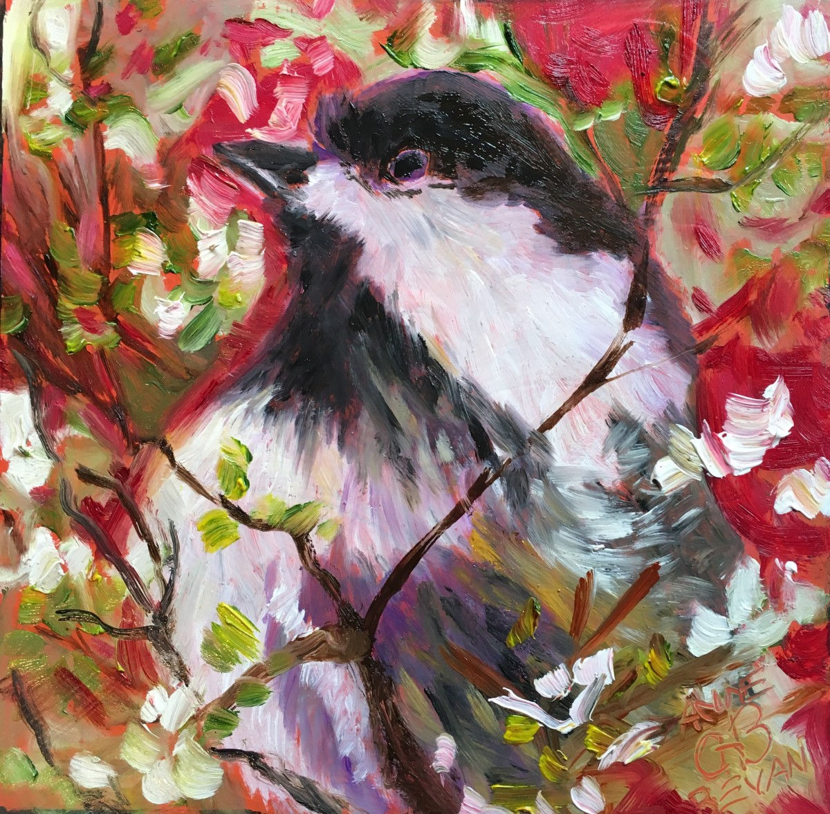 Chickadee in the Cherry Tree