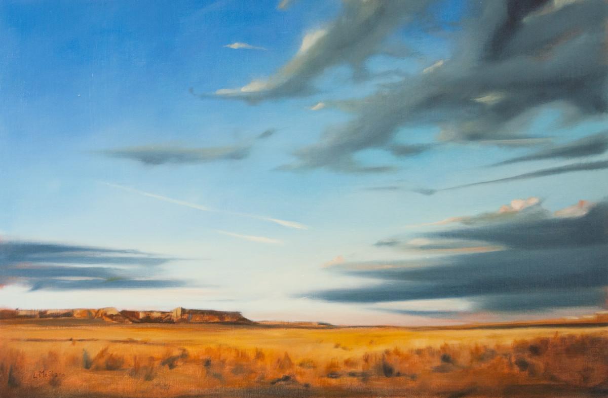Desert Skies by Lisa McShane