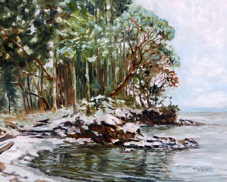 Oyster Bay Mayne Island BC with fresh snow