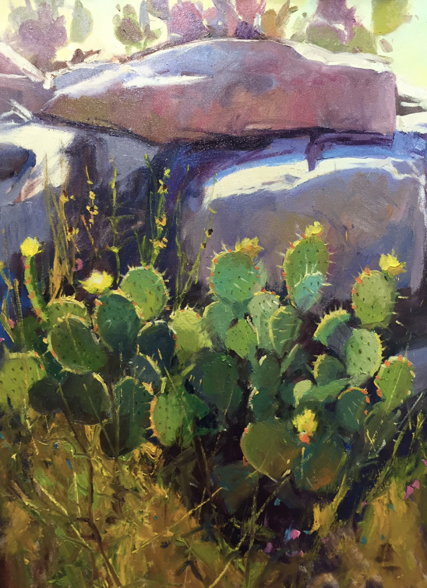 Cactus Amongst Granite