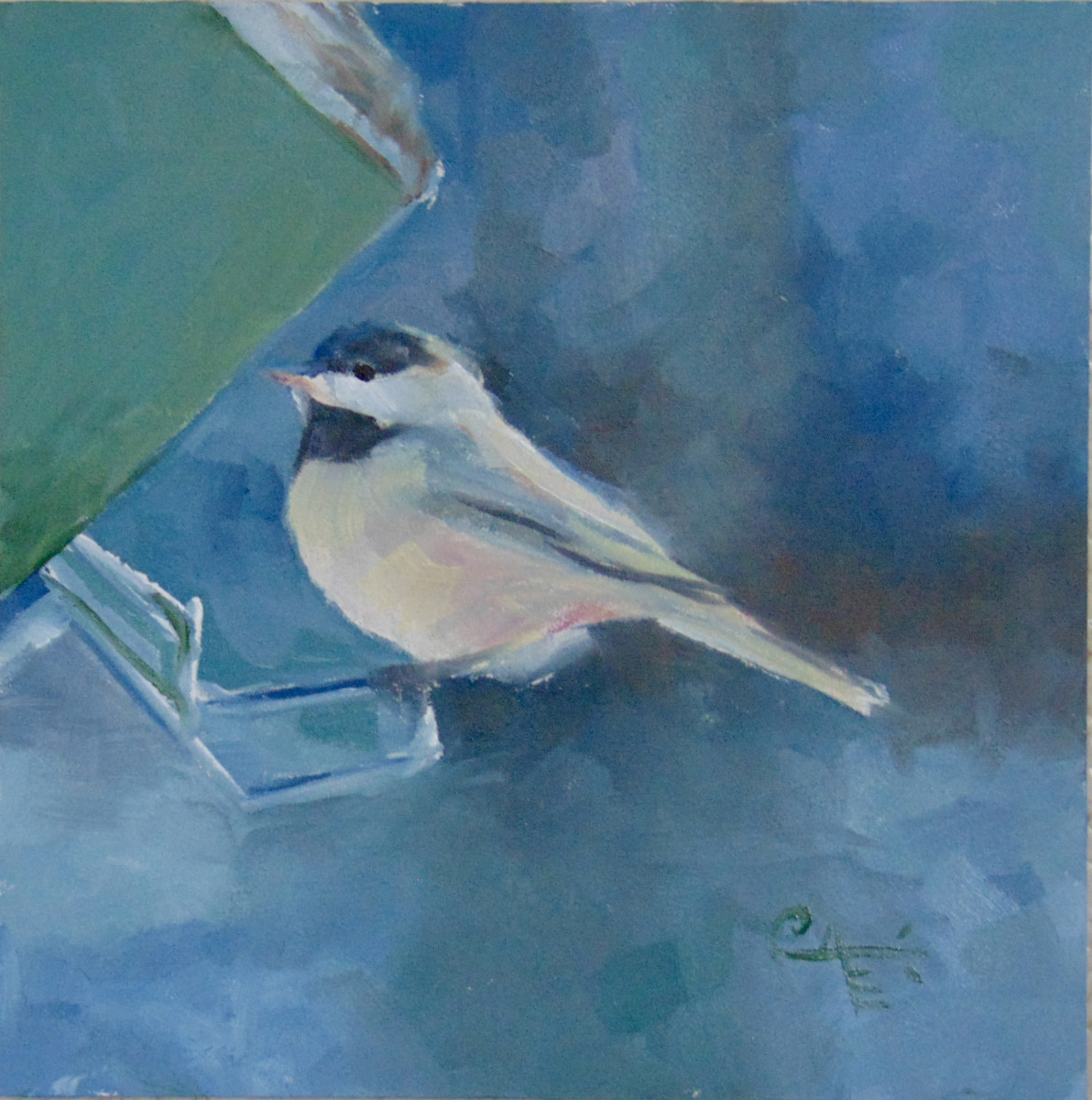 Carolina Chickadee II