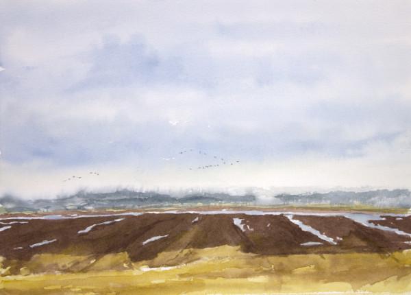 Goose Pond, January, Rain Coming