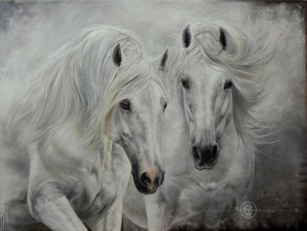 Duerto Blanco