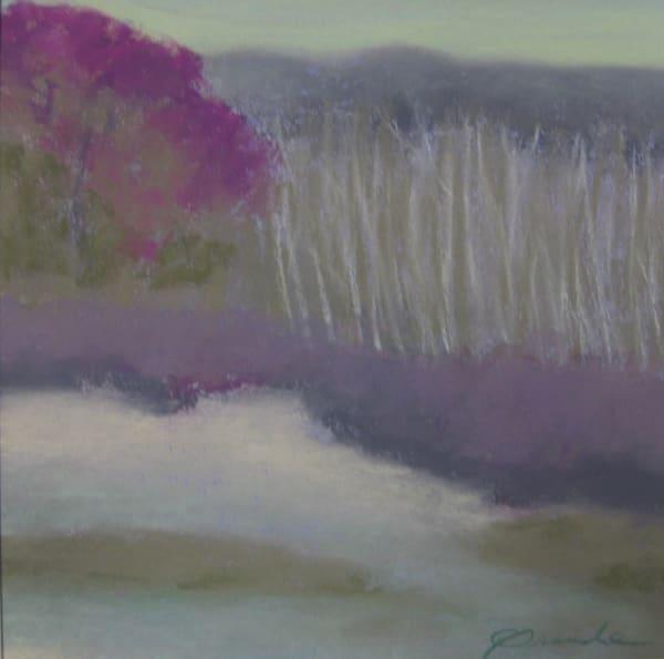 Great Swamp Spring