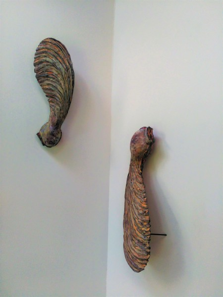 Carved Sycamore Pods (pair)  .  158