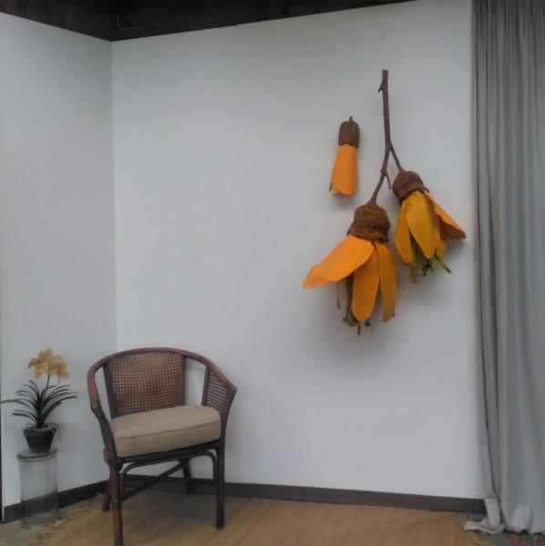 Kowhai Flowers . 171