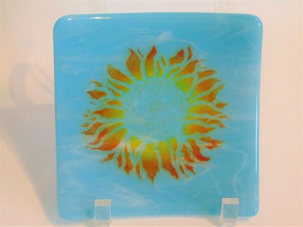 Small Plate-Sunflower Burst