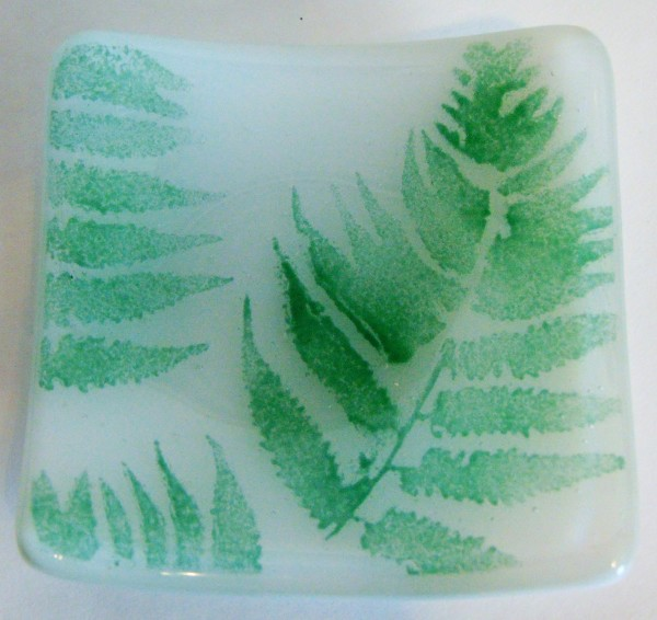 Fern on White Plate