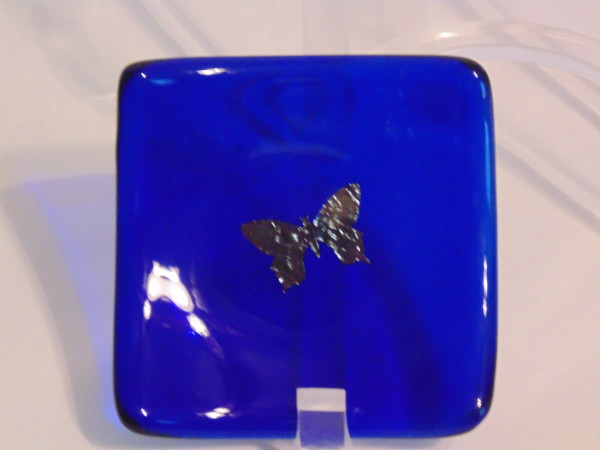 Small sushi-copper butterfly on cobalt blue