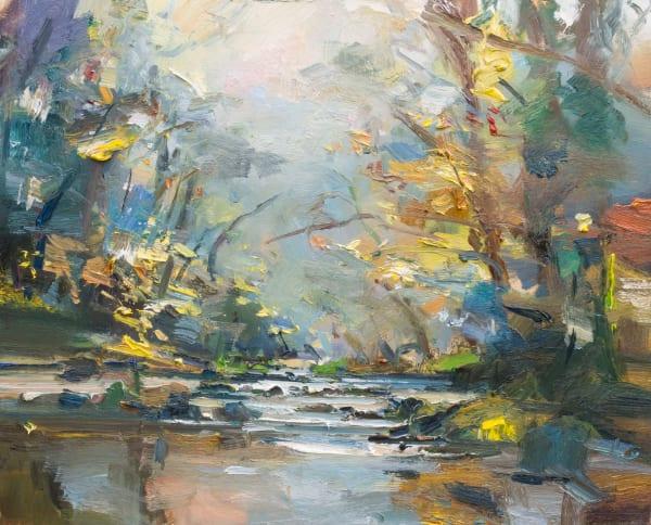 20. The River Plym in Autumn. Devon
