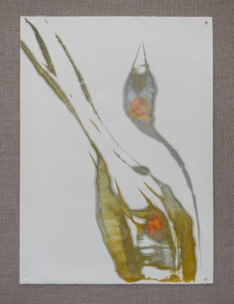 Nimbus No. 2