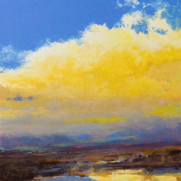 Desert Rain I