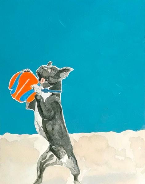 Dog with Orange Ball