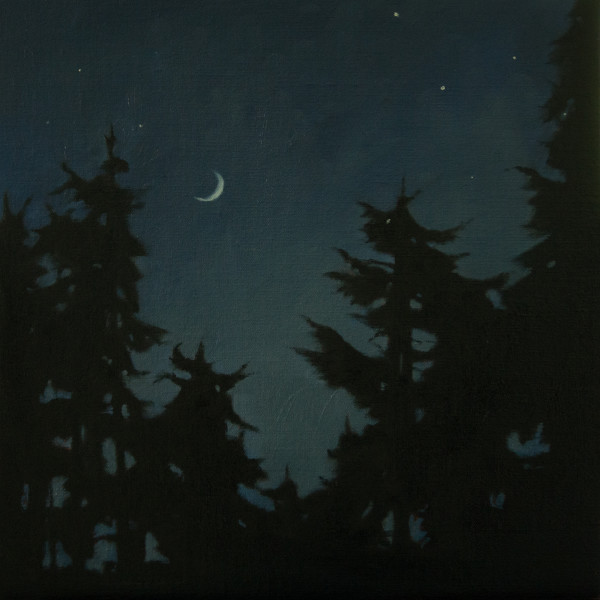 New Moon and Stars over the Forest