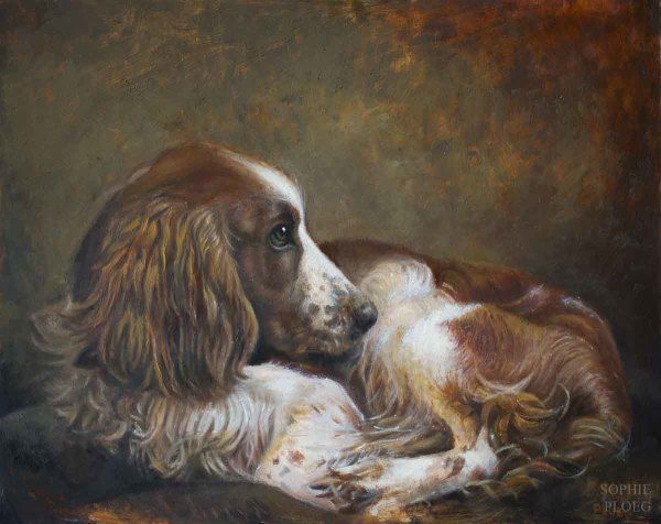 Portrait of a Spaniel
