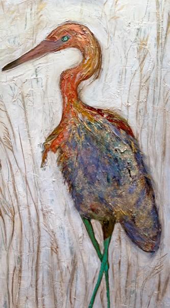 Reddish Egret in Golden Grass