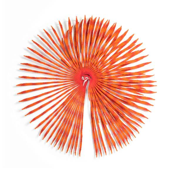 Fan Worm Crown