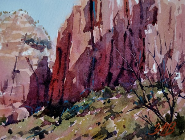Canyon Walls Study