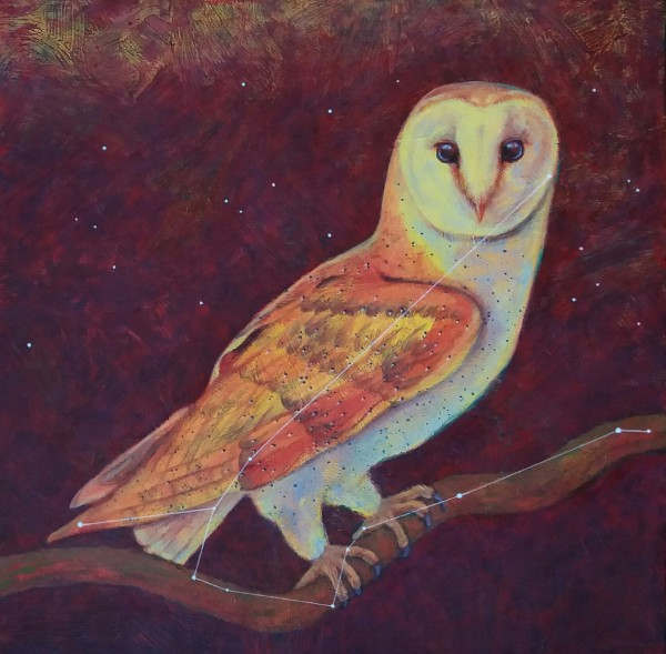 Astro Owl (constellation Noctua)