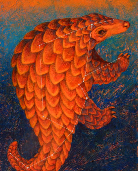 Pulsar Pangolin (constellation Manis)