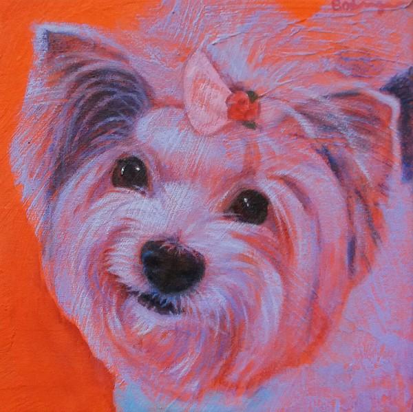 Pet Portrait - Roxie