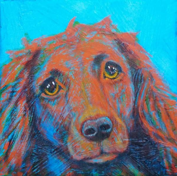 Pet Portrait - Sally