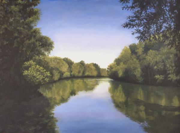 Saluda River View