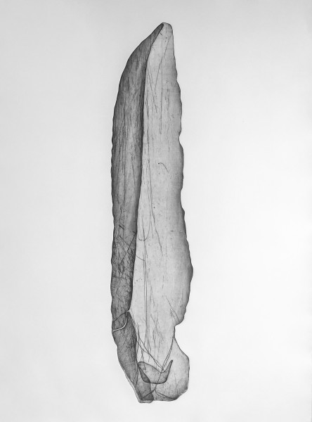 Worrorra Stone Knife, Vic Cox Collection