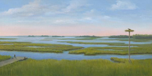 Fenwick Island Marsh