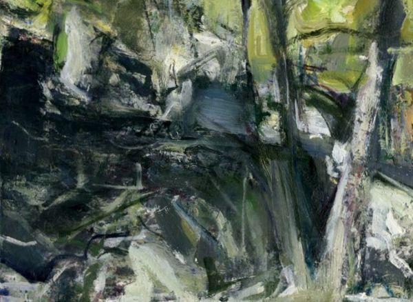 Carderock Woods