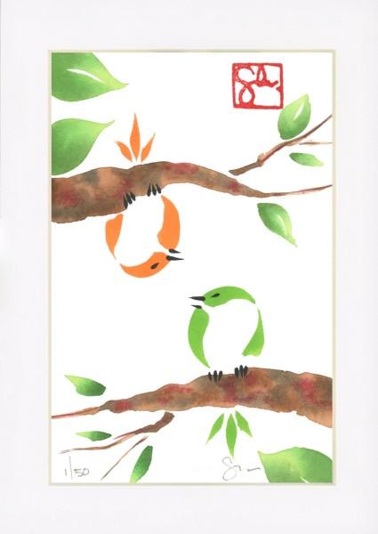 Bird Series