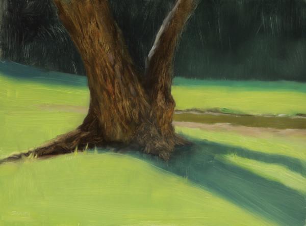 Oak Shadow