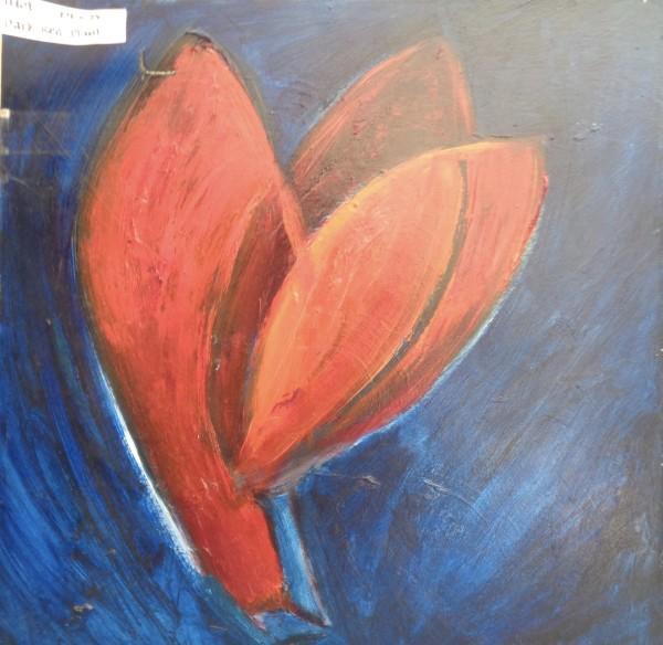 1169 Wild Red Plant