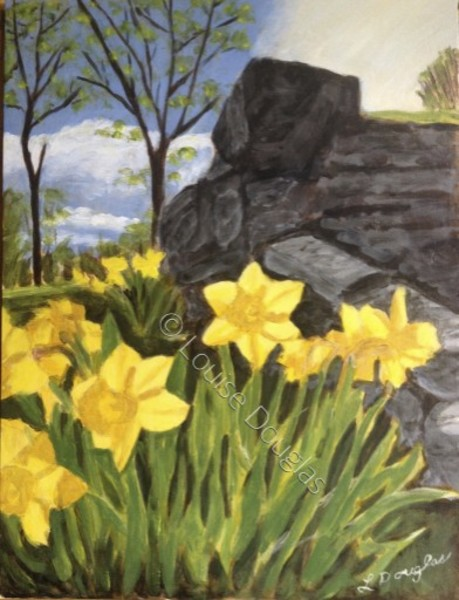 Daffodils, May Flowers
