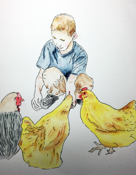 LI_chickens2
