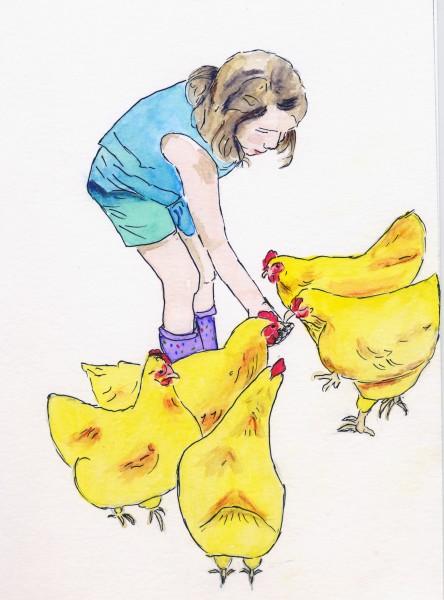 LI_chickens1