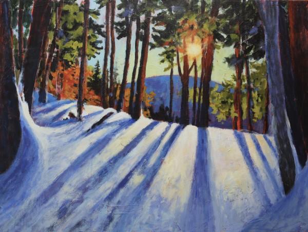 Landscape of Light