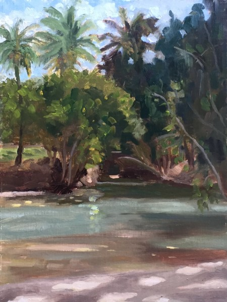 Lagoon, D.T. Fleming Beach, Maui