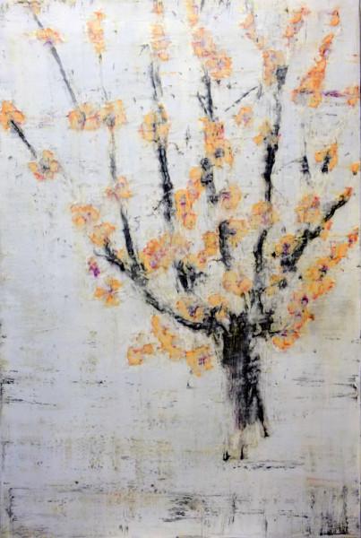 Marumero No Ki (Quince Tree)