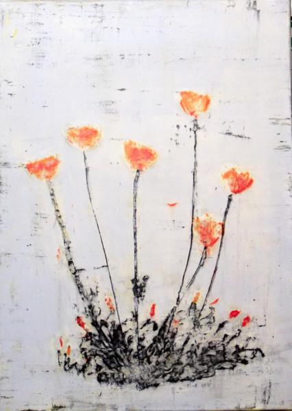 Orenji-iro no popī (Orange Poppy)