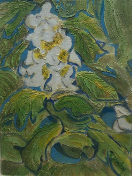 Botanical Garden 82, Oakleaf Hydrangea