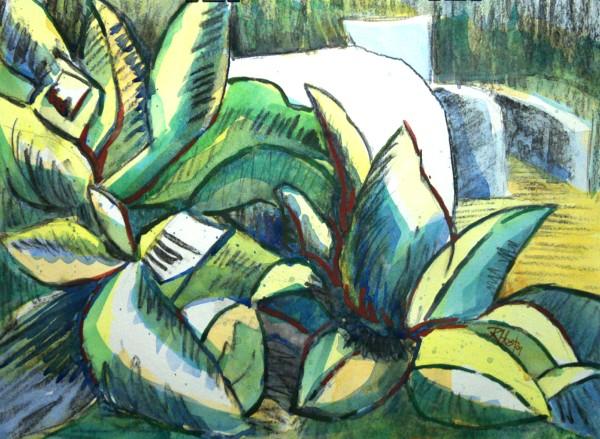 Botanical Garden 71