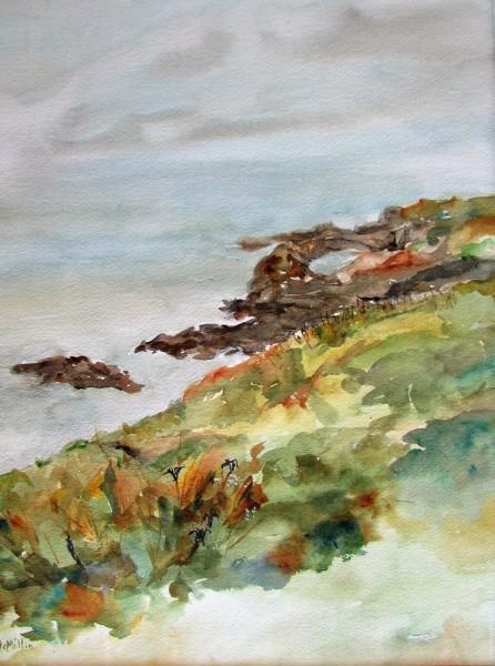 Mendocino Headlands 1