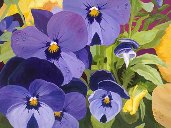 Spring Rain on Violas