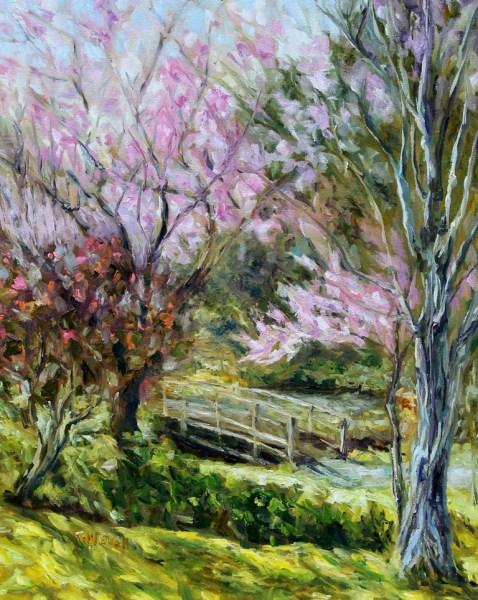 Plum Blossoms Japanese Garden