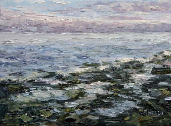Receding Tide Reef Bay