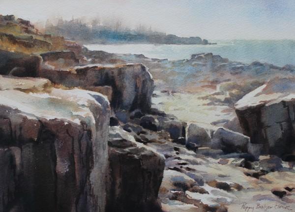 Sunlight on a Basalt Shore
