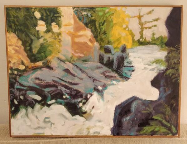 Rapids at Dave's Falls
